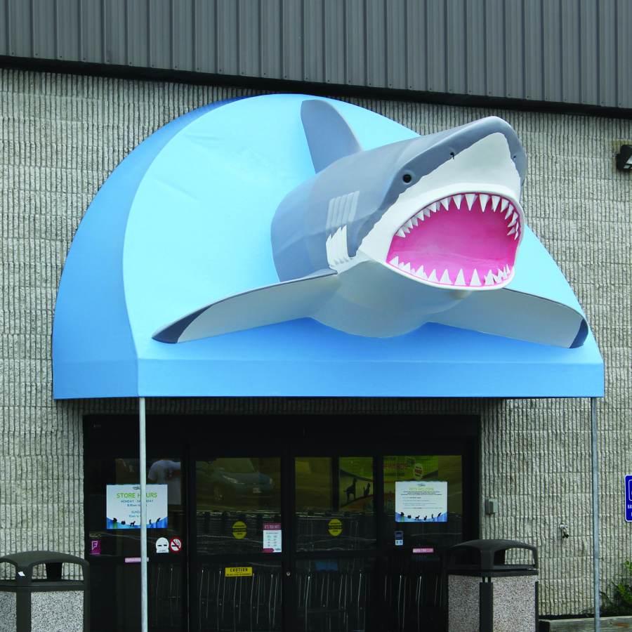 That Fish Place That Pet Place Discover Lancaster